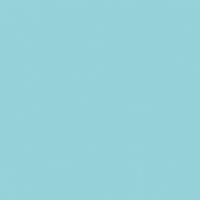 Aqua Bloom paint color DE5737 #96D3D8
