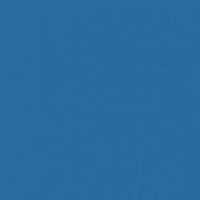 The Blues paint color DE5859 #296A9D