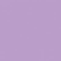 Purple Prophet paint color DE5983 #BB9ECA