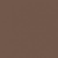 Deep Brown paint color DE6077 #6F5749