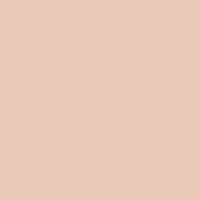 Galveston Tan paint color DE6101 #E8C8B8