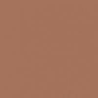 Chic Brick paint color DE6104 #A4725A
