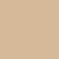 Terracotta Sand paint color DE6136 #D6BA9B