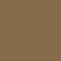 Chester Brown paint color DE6147 #876B4B
