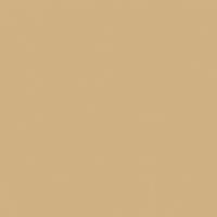 Warm Butterscotch paint color DE6151 #D0B082