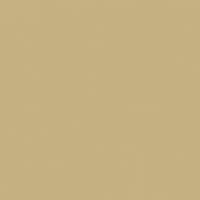 Desert Floor paint color DE6186 #C6B183