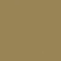 Spacious Plain paint color DE6188 #9A8557