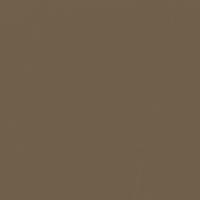 Midnight Brown paint color DE6210 #706048