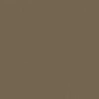 Ancient Earth paint color DE6217 #746550