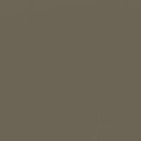 Shaker Gray paint color DE6231 #6C6556