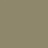 Wilderness paint color DE6236 #8F886C