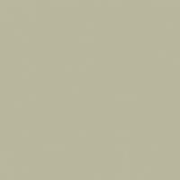 Trinity Islands paint color DE6249 #B9B79B