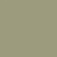 Fairbank Green paint color DE6250 #9D9C7E