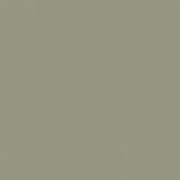 Elemental Green paint color DE6271 #969783