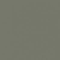 Armored Steel paint color DE6279 #747769