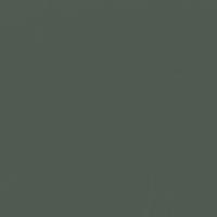 Hidden Forest paint color DE6301 #4F5A51
