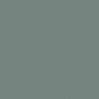Armor  paint color DE6306 #74857F