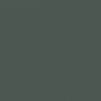Black Spruce paint color DE6308 #4C5752