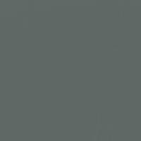 Dark Pewter paint color DE6314 #606865