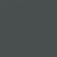 Cover of Night paint color DE6329 #494E4F
