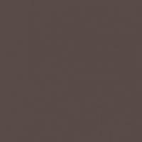 Molasses paint color DE6399 #574A47