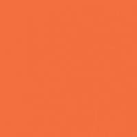 Orange Burst paint color DEA113 #FF6E3A
