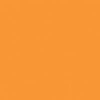 Orange Jewel paint color DEA115 #FF9731