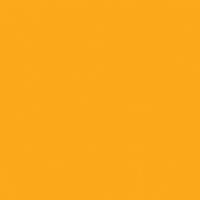 Flash of Orange paint color DEA116 #FFAA00