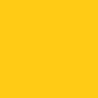 Confident Yellow paint color DEA117 #FFCC13