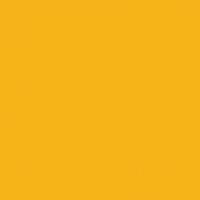 Yellow Summer paint color DEA118 #F9B500