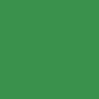 Wild Forest paint color DEA127 #38914A