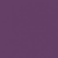 Purple Odyssey paint color DEA143 #643E65