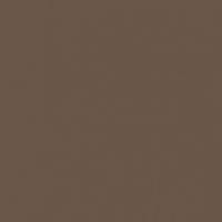 Wild Mustang paint color DEA161 #695649