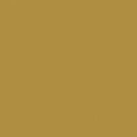 Pirate's Gold paint color DEA168 #B08F42