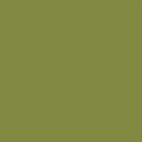 Sea Turtle paint color DEA170 #818A40