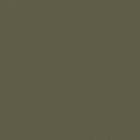 Olive Court paint color DEA174 #5F5D48