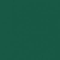 Billiard Table paint color DEA178 #155843