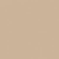 Stonish Beige paint color DEC716 #CCB49A