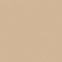 Slopes paint color DEC721 #D2B698