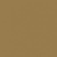 Alluring Umber paint color DEC730 #977B4D