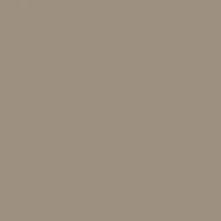 Bison Beige paint color DEC750 #9F9180