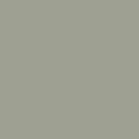 Meadowood paint color DEC777 #9DA28E