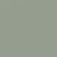 Sycamore Stand paint color DEC781 #959E8F