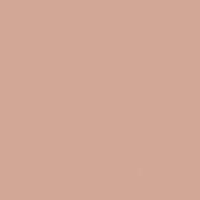 Tiffany Rose paint color DET433 #D2A694