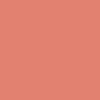 Pottery Clay paint color DET437 #E0816F