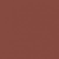 Spice of Life paint color DET439 #86493F