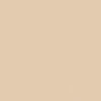 You're Blushing paint color DET446 #E2CAAF