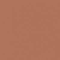 Arizona Clay paint color DET454 #AD735A