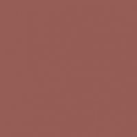 Copper Mining paint color DET455 #945C54
