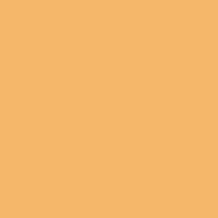 Citrus Honey paint color DET461 #F6B96B